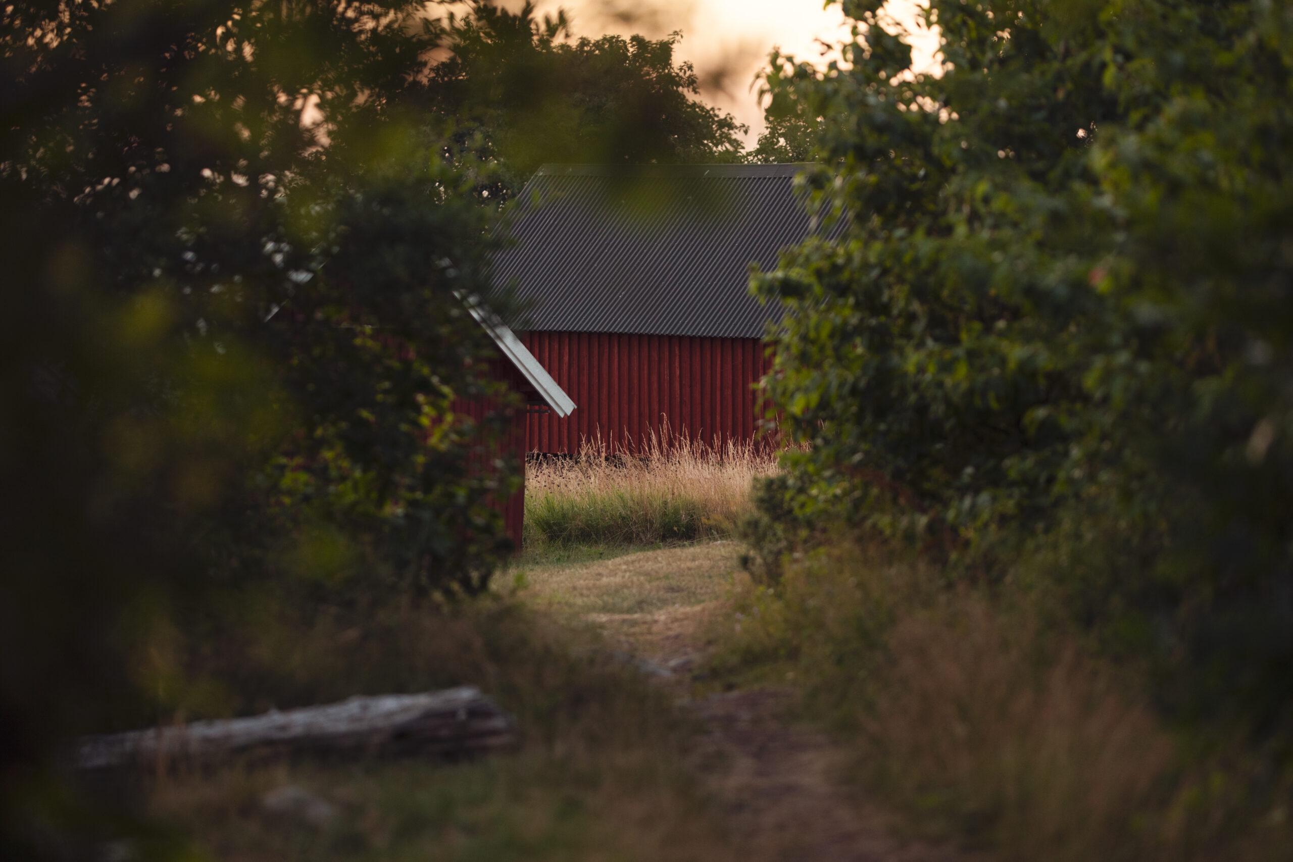 Free image of Swedish archipelago, Hasslö